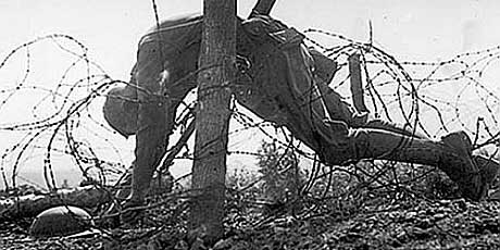 Dead soldier in barbed wire