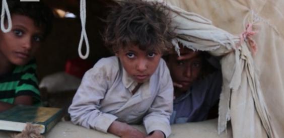 YemenGlaze564